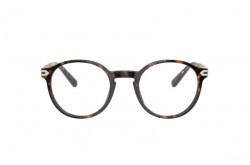 BVLGARI FRAME FOR MEN ROUND TIGER - BV3045 504